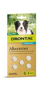 Bayer Drontal 5 Tab Medium Dogs - Drontal is Australias number 1 vet recommended allwormer for dogs and cats. Drontal Allwormer controls all gastrointestinal worms in dogs including roundworm, hookworm, whipworm and tapeworm (including hydatid tapeworm).