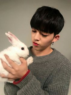 S.COUPS ALL ANIMALS ATTRACTED TO HIM   FROM SEVENTEEN'S FB