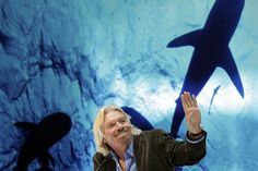 This is the twenty trillion-dollar reason why Richard Branson wants to save sharks.