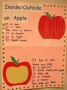 Apple Investigation @Marisol Olivo I love this! it would help for vocab. they have a pumpkin version too. but i think it'd be better with real pictures