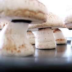 Meringue Mushrooms!!!!!!!!!! Oh my goodness this is SUCH a great idea! For all those darling whimsical fairy cakes or woodsie theme'd cakes!! I found this recipe on Allrecipes HERE: You make a batch of meringue and pipe it out into the tops and bases of the mushrooms. Then, once baked, dust the tops with cocoa …