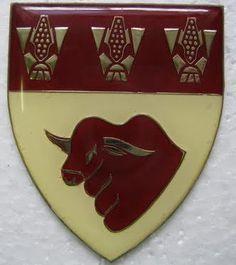 Hoopstad Commando. Authorised 1972. Located at Hoopstad.  #Etsy #Danahm1975 #Jewelry