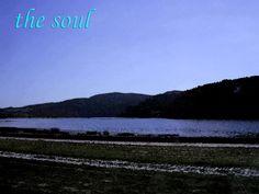 soul by Brick202.deviantart.com on @DeviantArt