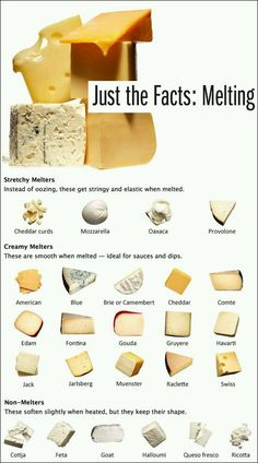 cheese the melting facts