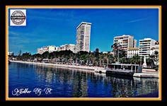 Alicante Fotográfico: Nací en Alicante.