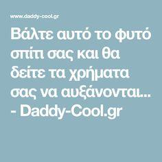 Βάλτε αυτό το φυτό σπίτι σας και θα δείτε τα χρήματα σας να αυξάνονται... - Daddy-Cool.gr