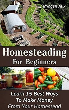 Homesteading For Beginners: Learn 15 Best Ways To Make Money From Your Homestead: (How to Build a Backyard Farm, Mini Farming Self-Sufficiency On 4 . farming, How to build a chicken coop, ) - Kindle edition by Imogen Alix. Crafts, Hobbies & Home Kind Homestead Farm, Homestead Living, Farms Living, Homestead Survival, The Farm, Small Farm, Mini Farm, Permaculture Design, Future Farms