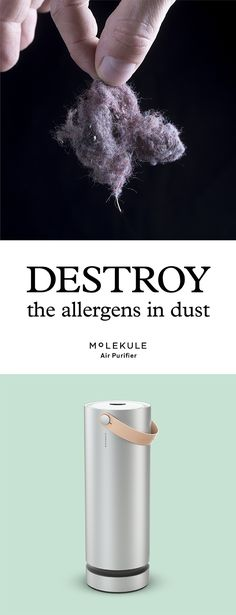 Molekule's unique nanotechnology makes it the only air purifier to completely destroy allergens like pollen and mold, leaving nothing but truly clean air in your bedroom. And when symptom causing pollutants are eliminated, you can enjoy sound, symptom-free sleep.