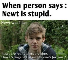 Why would anybody say Newt is stupid? Have you even seen Thomas? Or Minho? Newt Maze Runner, Maze Runner Funny, Maze Runner Thomas, Really Funny Memes, Stupid Funny Memes, Funny Relatable Memes, Funny Texts, Funny Quotes, Hilarious