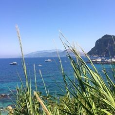 The view from the road of the Isola di Capri