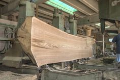 Cutting a Chestnut Log ~ Hearne Hardwoods Inc.-SR