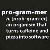 Are you a programmer?