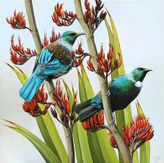Art by the Sea art gallery specializes in fine NZ arts and crafts, with a huge range of original, fine New Zealand and Maori arts and crafts. Tui Bird, Fun Craft, Craft Ideas, Flax Flowers, Bird Artists, New Zealand Art, Nz Art, Maori Art, Animal Paintings