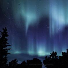 Early morning aurora.  #photography #photo #scenic #beautiful #landscape #Michigan #puremichigan #outdoors #travel #nature #sky #aurora #landscape #night #country