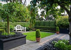 A formal garden apartment, HEDGE Garden Design & Nursery. Photo courtesy of Paul McCredie for NZ House & Garden. Formal Gardens, Small Gardens, Outdoor Gardens, Courtyard Gardens, Side Gardens, Garden Hedges, Garden Paths, Topiary Plants, Garden Entrance