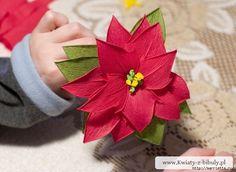 https://www.google.it/search?q=fiori di carta crespa