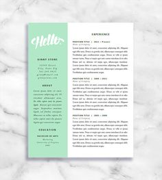 Professional Cv Template  Cv Template For Word  Creative Resume