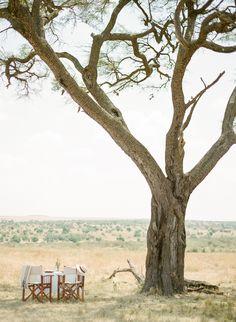 safari chic and romance in the Serengeti with Bushtops Camps