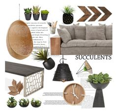 """Cacti + Succulents"" by indhrios ❤ liked on Polyvore featuring interior, interiors, interior design, home, home decor, interior decorating, CB2, NDI, Sika and WALL"