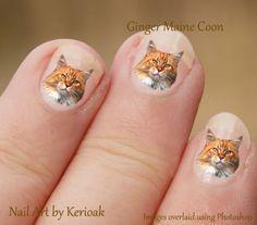Ginger-Maine-Coon-24-Unique-Designer-Cat-Nail-Art-Stickers