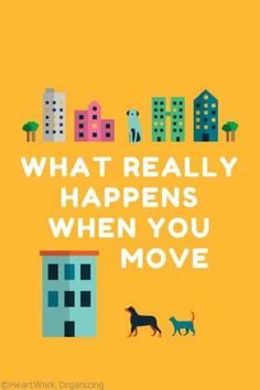 What Really Happens When You Move