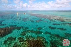 Snorkeling avec Otentic à l'Ile Maurice Snorkeling, Sea Activities, Paradise, Ocean, River, Island, World, Outdoor, Photos