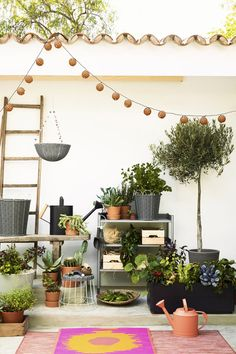 Get creative with your gardening! When it comes to plants, you can stack it, han… Get creative with your gardening! When it comes to plants, you can stack it, hang it or dig it – all within your budget. Find IKEA ideas in our Spring Refresh Guide. Balcony Plants, Patio Plants, Potted Plants, Indoor Plants, Plant Pots, Oasis, Outdoor Spaces, Gardens, Window Boxes