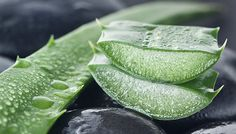 9. Aloe Vera For Cellulite