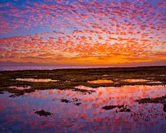 Tide pools at sunset