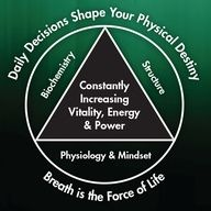 Physical Mastery is a result of constantly improving the five key components of health (the five core elements of the pyramid): daily decisions, breath, biochemistry, structure and physiology & mindset.