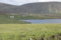 The beautiful Shetland Isles.