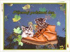 Picture Search, Hiking Boots, Facebook, Pictures, Walking Boots, Photos, Photo Illustration, Resim, Clip Art