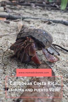 Caribbean Costa Rica: Cahuita and Puerto Viejo
