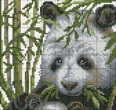 Panda Chart