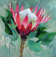 Pink Flame, Protea flower Oil painting