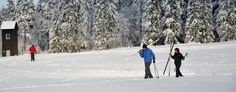 Weil die Winter in #Braunlage überwältigend sind.