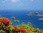 Caribbean cruise next summer??