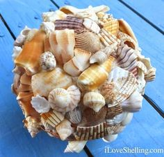 Sanibel Island Shell Crafts