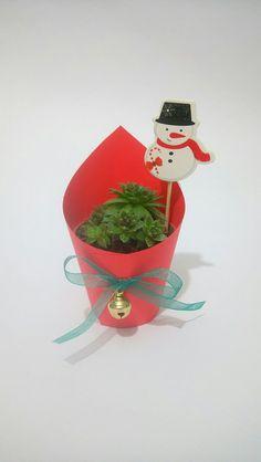 #succraft #succulent #sukulent #bebek #doğum #hediye #babyshower #doğumgünü