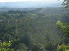 Monferrato patrimonio dell'Unesco