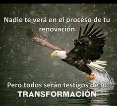Nadie te verá en el proceso de tu renovación, pero todos serán testigos de tu transformación. Motivational Words, Inspirational Quotes, My Redeemer Lives, Jesus Is Life, Pictures Of Christ, Christian World, Christian Messages, Spiritual Disciplines, Pretty Quotes