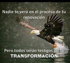 Nadie te verá en el proceso de tu renovación, pero todos serán testigos de tu transformación.