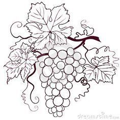 Illustration about Grapes With Leaves, editable vector illustration. Illustration of drink, grapes, botany - 6022617 Coloring Books, Coloring Pages, Leaf Clipart, Wood Burning Art, Wine Art, Bottle Painting, Wine Bottle Crafts, Pyrography, Grape Vines