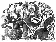Olivia Knapp y sus Increíbles y Detalladas Ilustraciones Surrealistas | FuriaMag | Arts Magazine