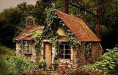 nature reclaiming stone house 11026002_10153572551617119_2035535066934142035_n.jpg (796×508)