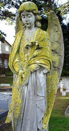 yellow stone angel