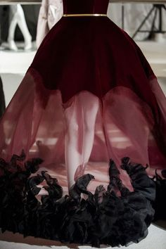 Stéphane Rolland - Haute Couture - Fall 2014:
