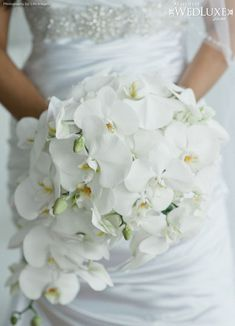 White Orchid Wedding Dress