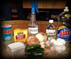 Frugal Living: Homemade Pesticides
