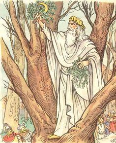 Druide cueillant du gui.  L'illustrateur Henri Dimpre (1907-1971)